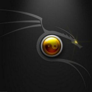 divvy windows crack free serial key